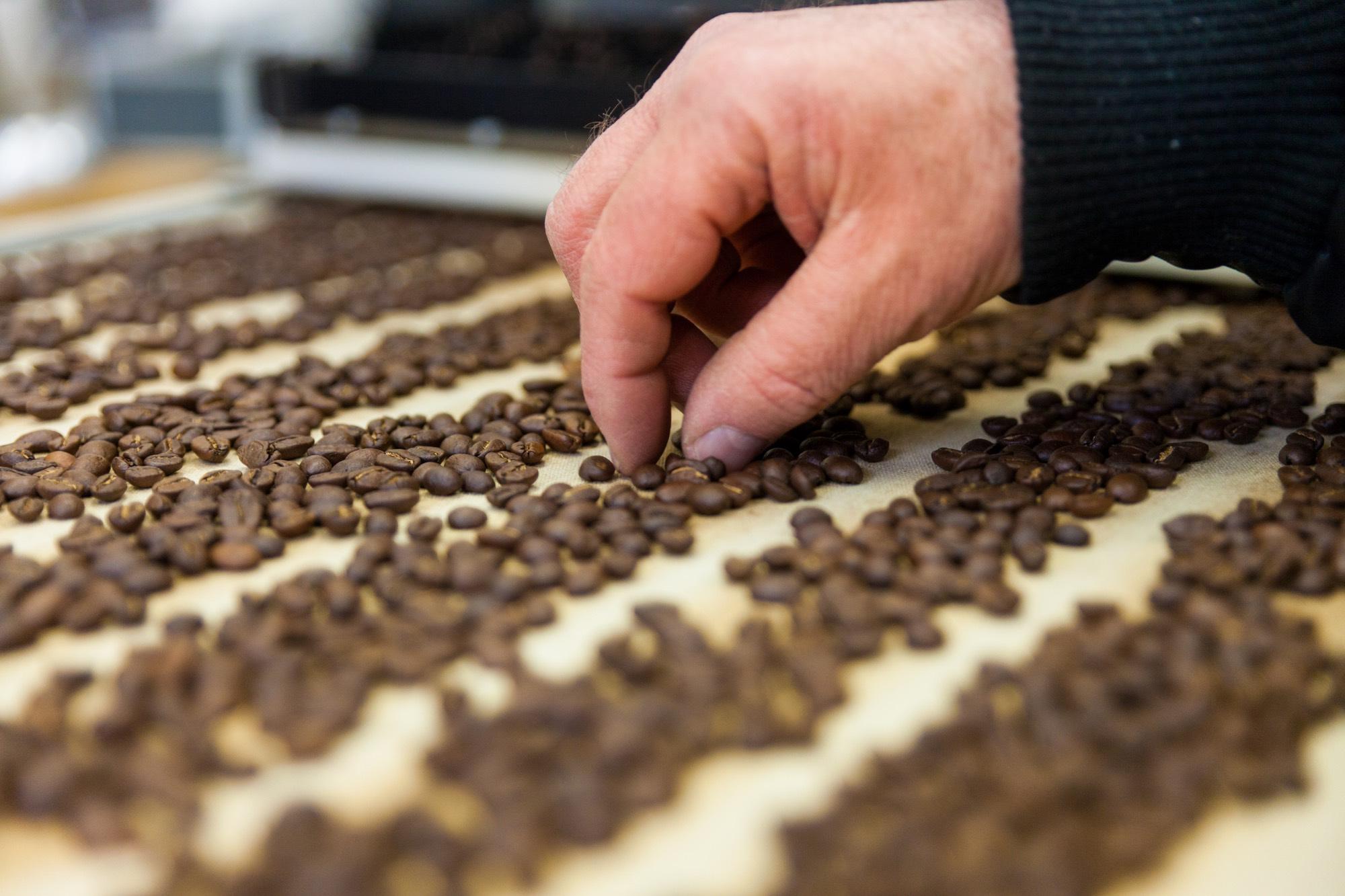 Von Hand verlesener Kaffee